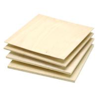model plane plywood