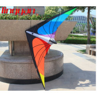Stunt Kite Flying